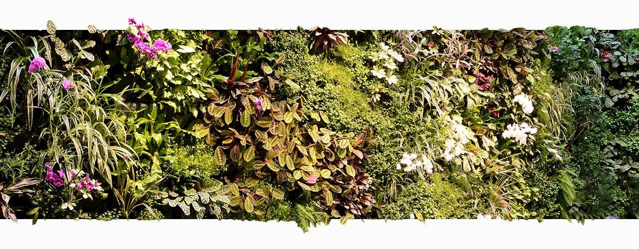 Green wall Pas de Calais hotel