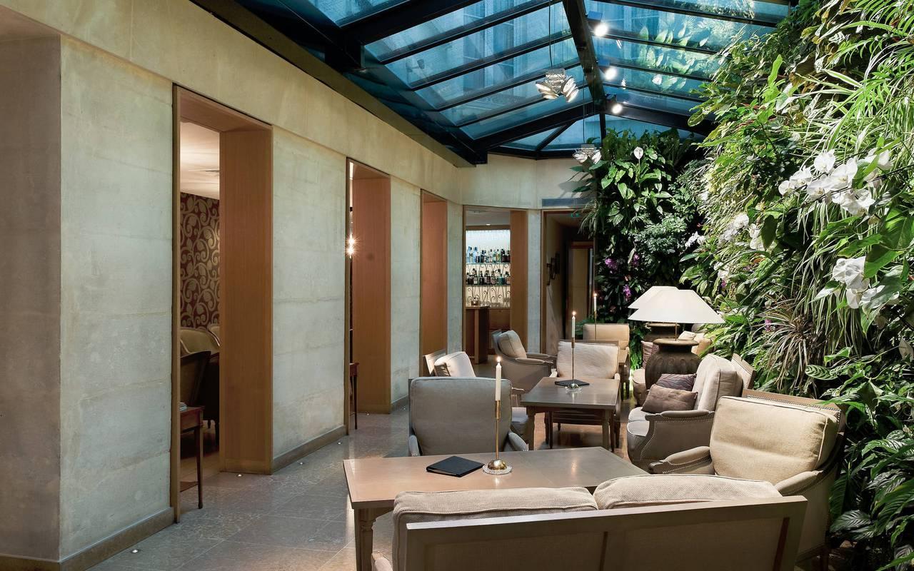 Green wall charming hotel Saint-Germain des Prés